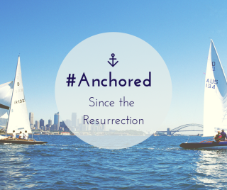 Blog Anchored